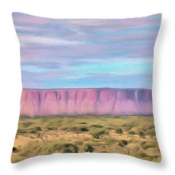 Pink Mesa Throw Pillow