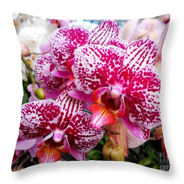 Pink Moth Orchids Throw Pillow