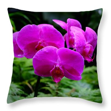 Pink Orchids Throw Pillow by Mini Arora