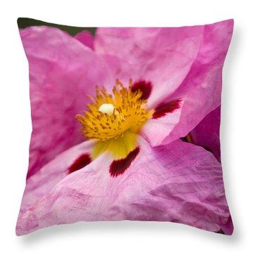 Pink Parchment Flower Throw Pillow