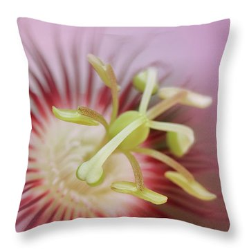 Pink Passion Throw Pillow