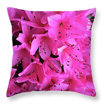 Throw Pillow featuring the photograph Pink Passion In The Rain by Sherry Hallemeier