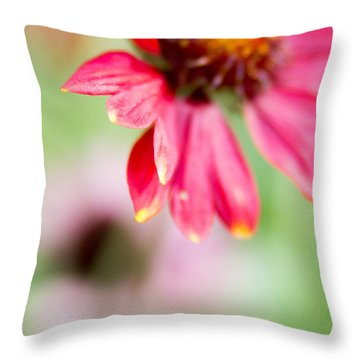 Throw Pillow featuring the photograph Pink Petal by Erin Kohlenberg