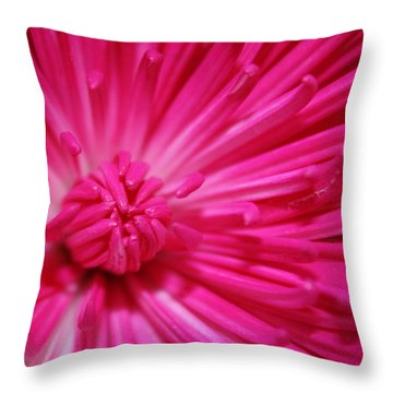 Pink Petals Throw Pillow by Inspired Arts