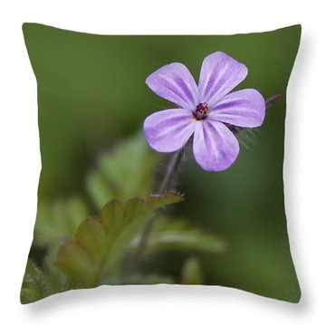 Pink Phlox Wildflower Throw Pillow