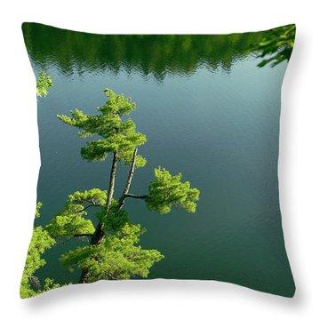 Pink Pine Throw Pillow