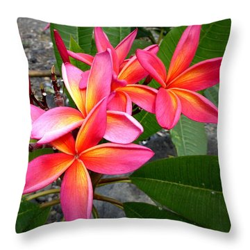 Pink Plumerias Throw Pillow