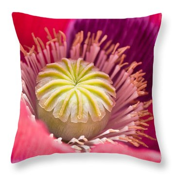 Pink Poppy Flower Throw Pillow