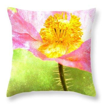 Cheerful Throw Pillows