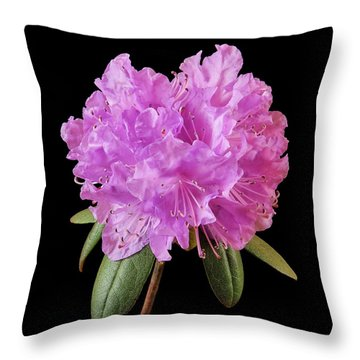 Pink Rhododendron  Throw Pillow by Jim Hughes