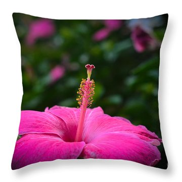 Throw Pillow featuring the photograph Pink Romance by Kelly Wade