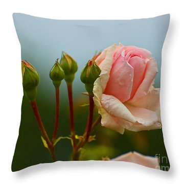 Pink Rose 2 Throw Pillow