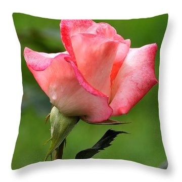 Pink Rose 3 Throw Pillow by Edward Sobuta