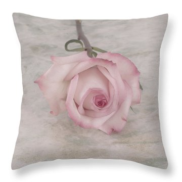 Pink Rose Beauty  Throw Pillow by Sandra Foster