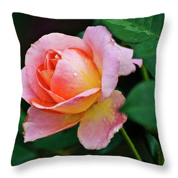 Throw Pillow featuring the photograph Pink Rose by Bill Barber