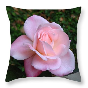 Pink Rose Throw Pillow by Carla Parris