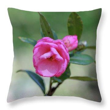 Pink Rose Flower Throw Pillow