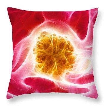 Pink Rose Fractal Throw Pillow by Matthias Hauser