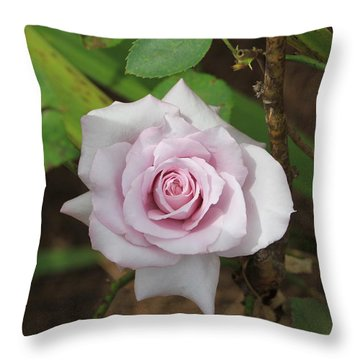 Pink Rose Throw Pillow by Jerry Battle