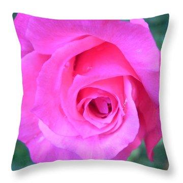 Pink Rose Throw Pillow by John Parry