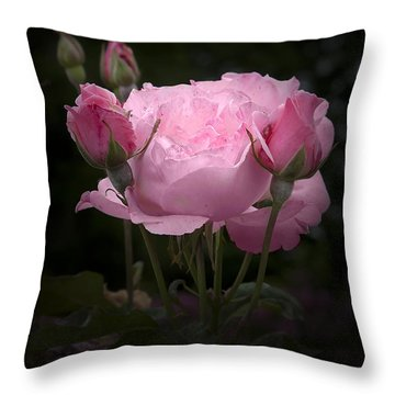 Pink Rose With Buds Throw Pillow