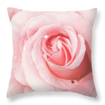 Pink Rose With Rain Drops Throw Pillow