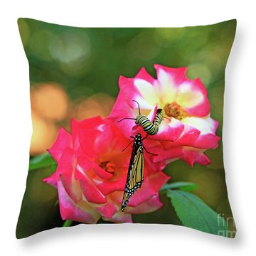 Pink Roses And Butterfly Photo Throw Pillow