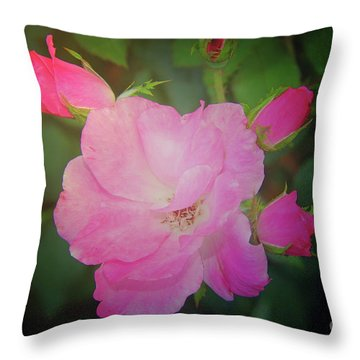 Pink Roses  Throw Pillow by Inspirational Photo Creations Audrey Woods