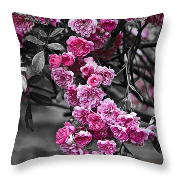 Pink Roses Throw Pillow by Svetlana Sewell