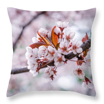 Throw Pillow featuring the photograph Pink Sakura Cherry Blossom by Alexander Senin