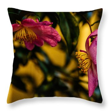 Pink Sasanquas  Throw Pillow