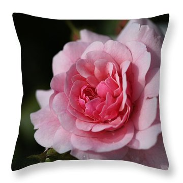 Pink Shades Of Rose Throw Pillow