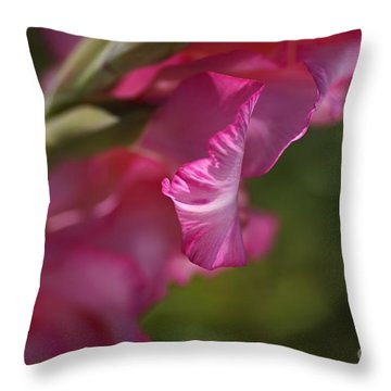 Pink Side Of Gladioli Throw Pillow