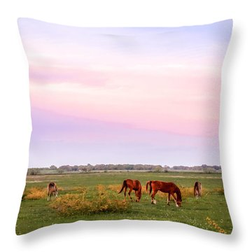 Throw Pillow featuring the photograph Pink Sky Night by Melinda Ledsome