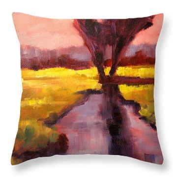 Pink Sky Sunset Throw Pillow