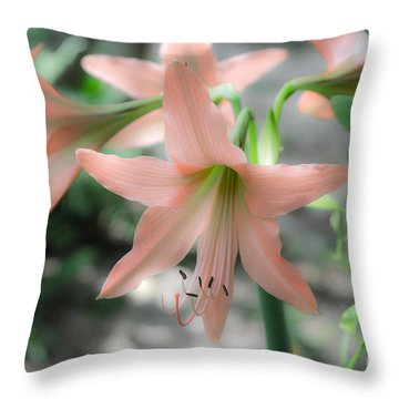 Pink Softness Throw Pillow