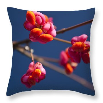 Throw Pillow featuring the photograph Pink Spindle Fruit by David Isaacson