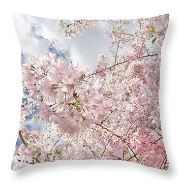 Pink Spring Throw Pillow by Daniel Furon