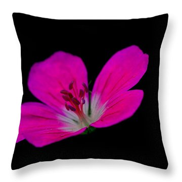 Pink Stamen Throw Pillow by Richard Patmore