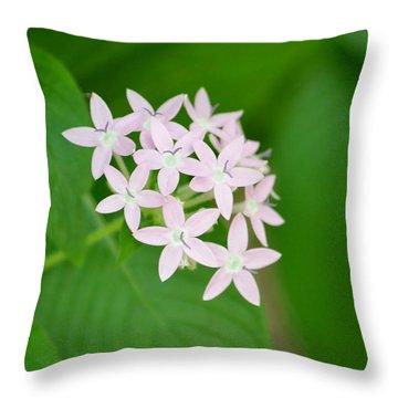 Pink Stars Throw Pillow