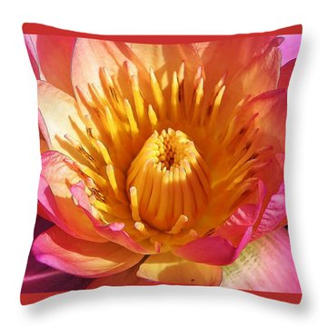 Pink Suprise Throw Pillow
