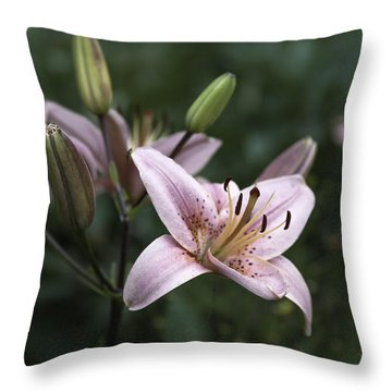 Pink Tiger Lily Throw Pillow