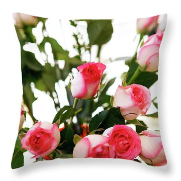 Pink Trimmed Roses Throw Pillow by Marilyn Hunt