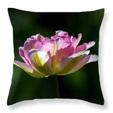 Throw Pillow featuring the photograph Pink Tulip by Angela DeFrias