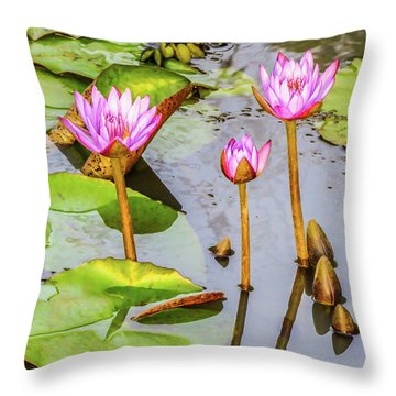 Pink Water Lilies In A Pond Throw Pillow