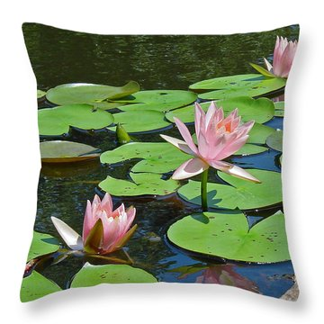 Pink Water Lilies Throw Pillow by Suzanne Gaff