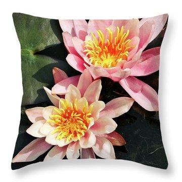 Pink Waterlilies Close Up Throw Pillow