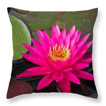 Pink Waterlily Garden Throw Pillow