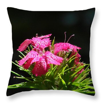 Pink William Throw Pillow