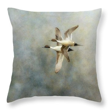 Throw Pillow featuring the photograph Pintail Duo by Angie Vogel